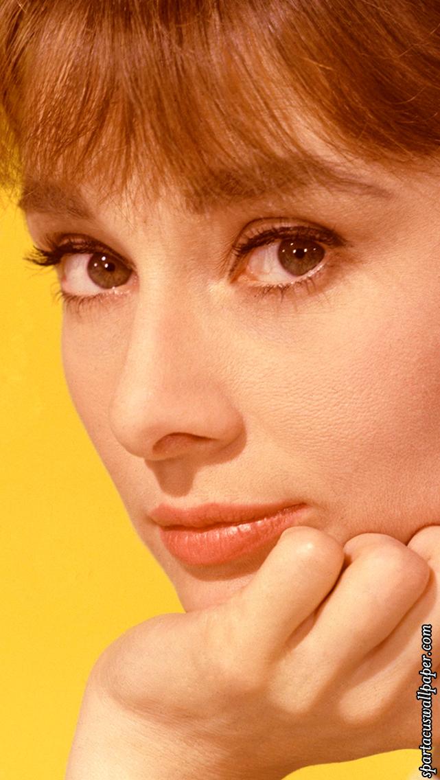 Phone Lock Screen Audrey Hepburn XII