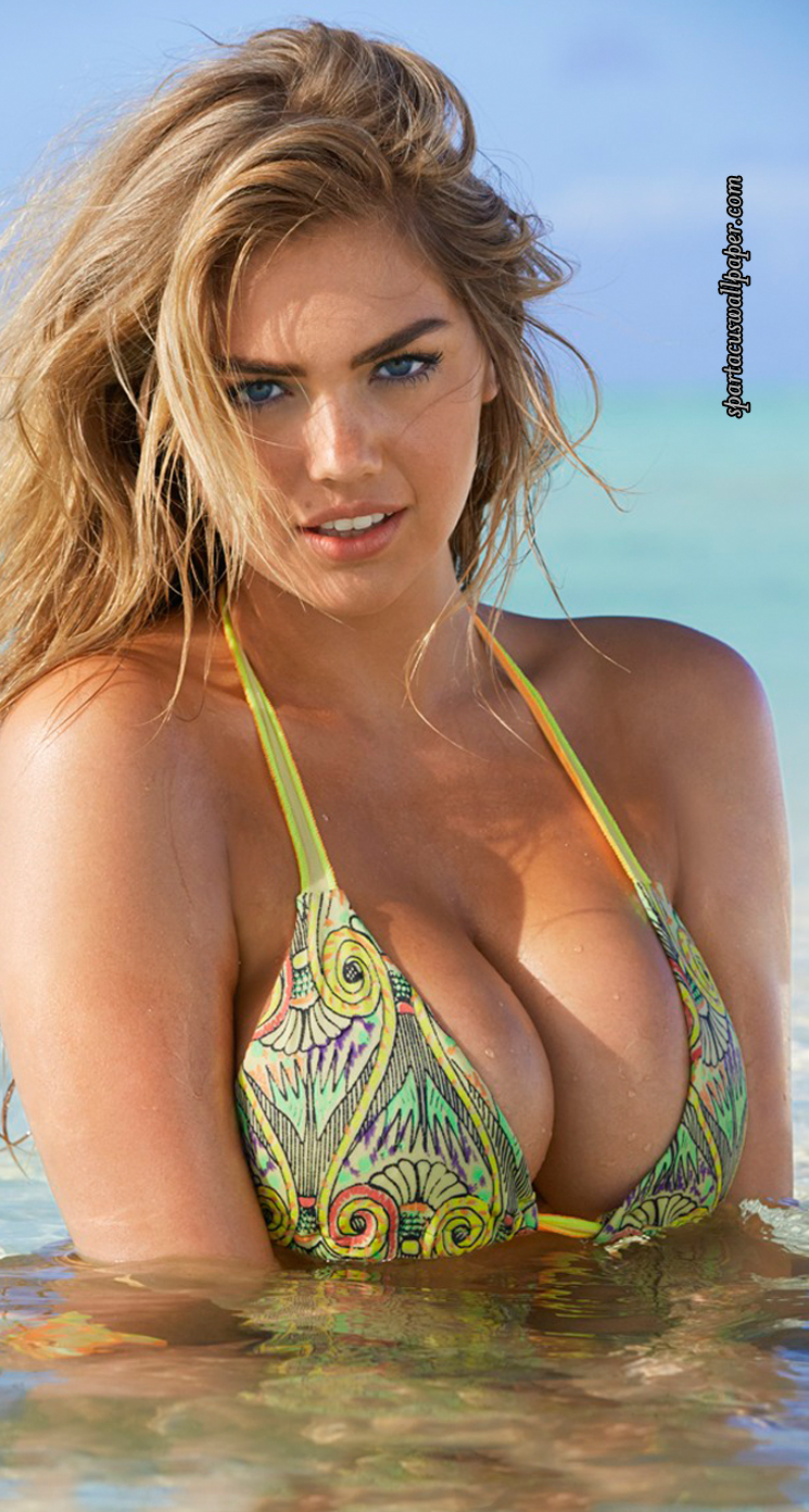 Kate upton iv desktop backgrounds mobile home screens perspective iphone lock screen kate upton iv perspective iphone home screen voltagebd Choice Image