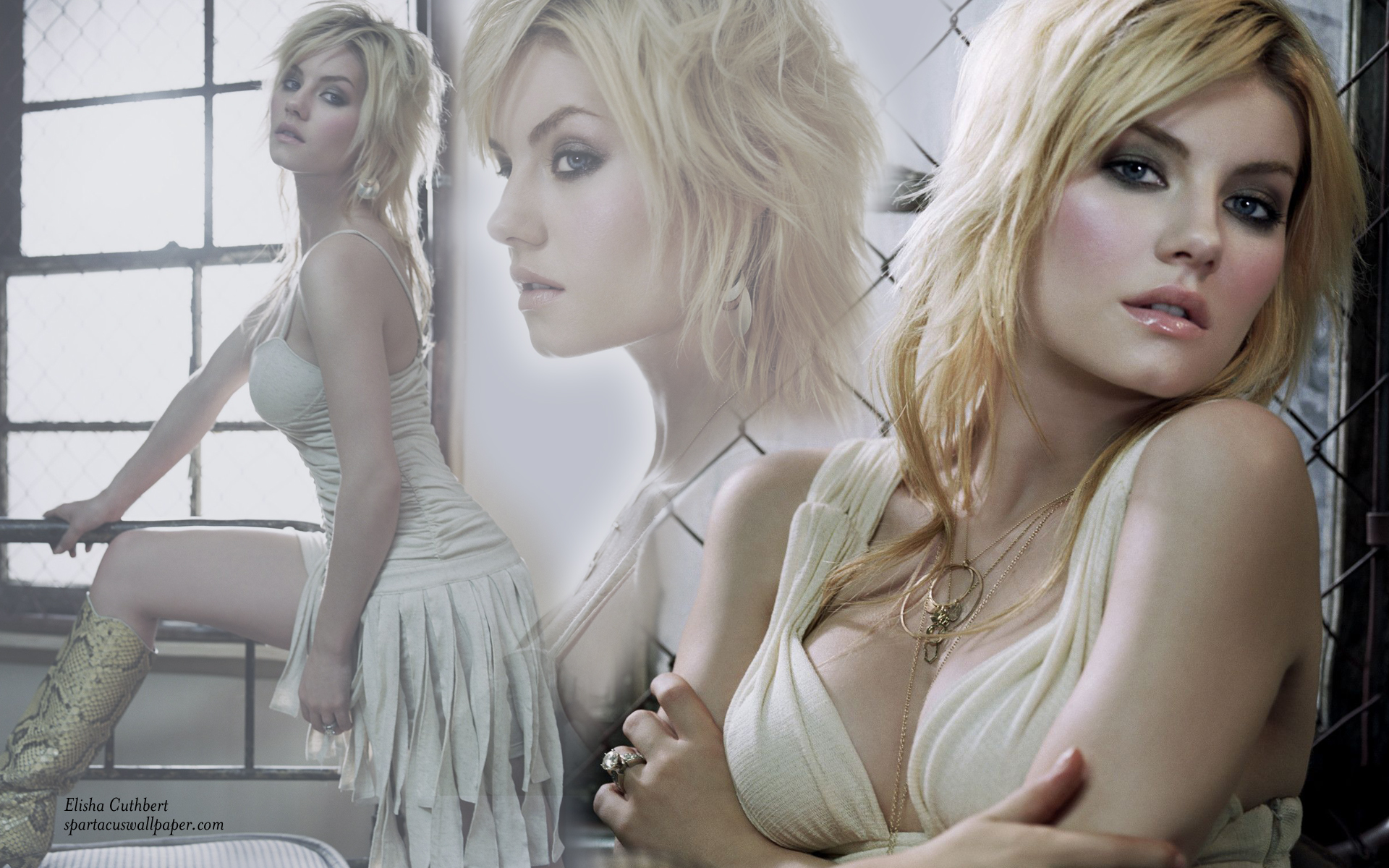Elisha Cuthbert Viii Desktop Backgrounds Mobile Home
