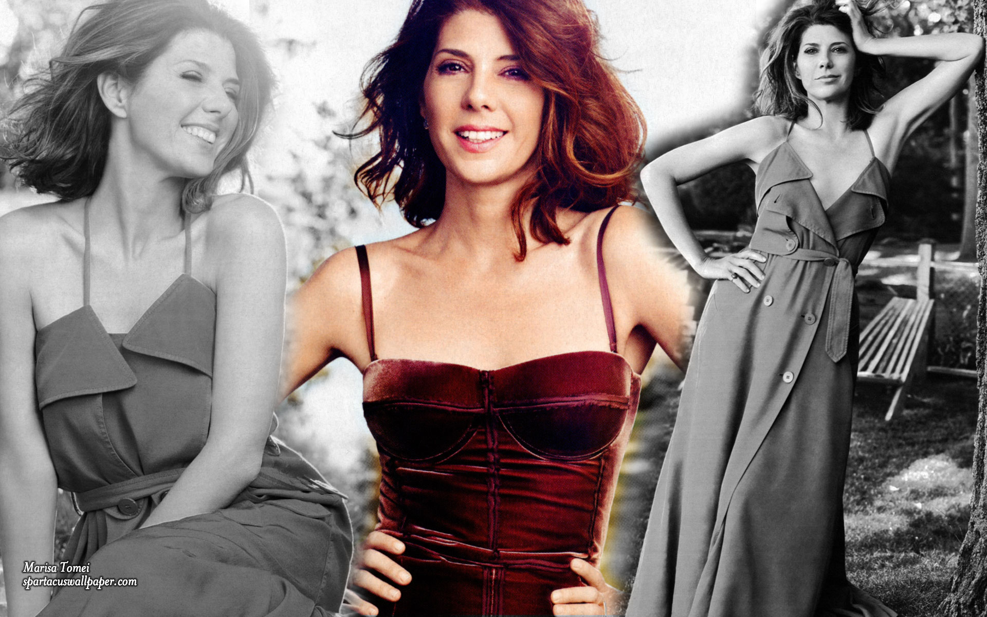 Marisa Tomei Desktop Backgrounds Mobile Home Screens