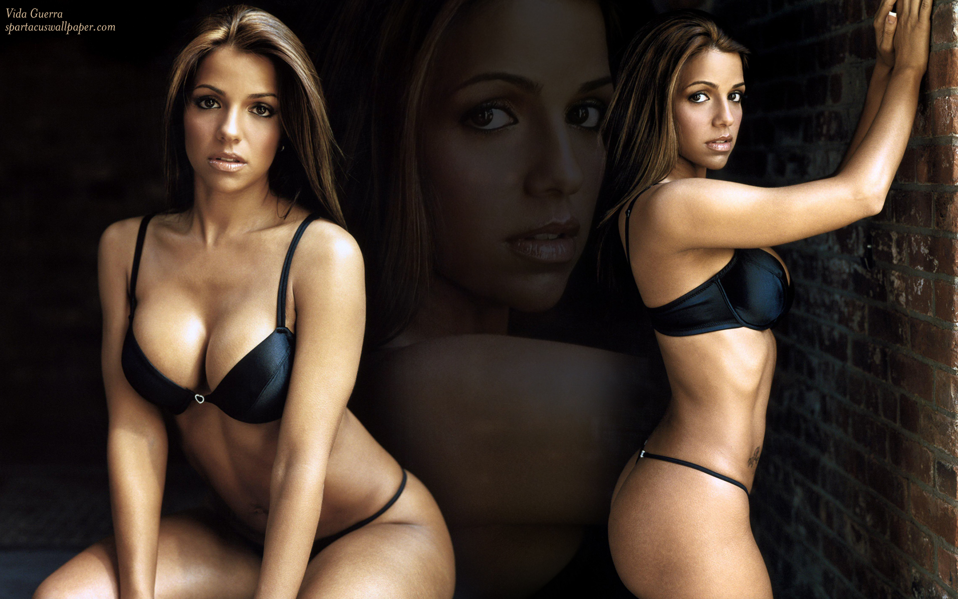 Can not vida guerra gallery you for